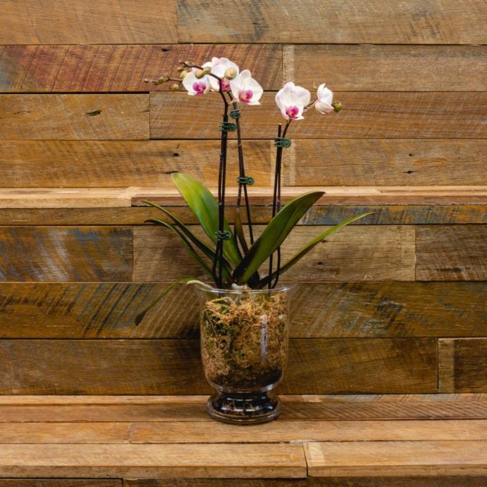 Photography: Buds & Beans Floral Arrangements